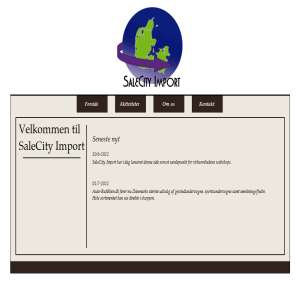SaleCity Import